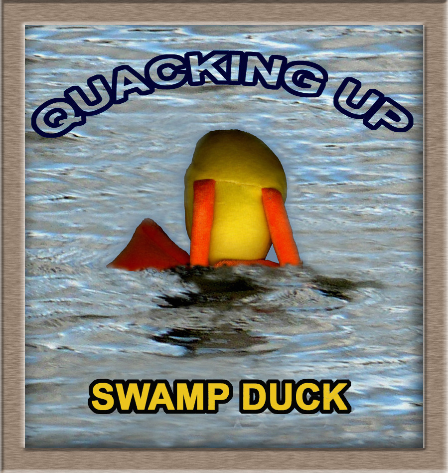 Purchase Quacking Up CD